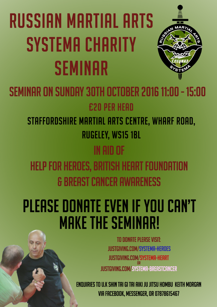 systema-flyer